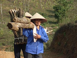 Women who are collecting firewood from the mountain